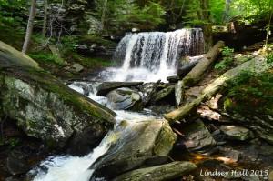 BReynolds Falls