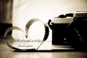 photo quote1