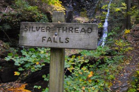 silverfalls1